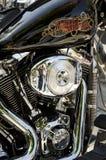 Águila 103 del grito Imagenes de archivo