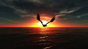Águila calva stock de ilustración