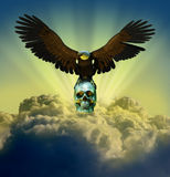 Águila calva en el cráneo en cielo Fotos de archivo libres de regalías