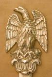 Águila de cobre amarillo Foto de archivo libre de regalías