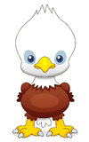 Águila de la historieta Fotos de archivo libres de regalías