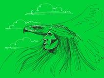 Águila de la pizca del nativo americano Imágenes de archivo libres de regalías