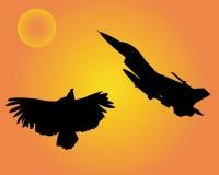 Águila de los aviones y del pájaro Fotografía de archivo
