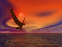 Águila de mar ilustración del vector