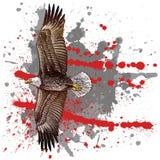 Águila del estilo del grabar en madera imágenes de archivo libres de regalías