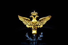 águila Dos-dirigida Imagenes de archivo