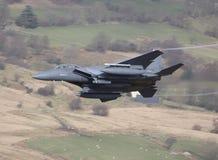 Águila F15 Fotografía de archivo libre de regalías