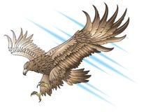Águila que ataca imagenes de archivo