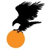 Águila y una bola anaranjada Fotos de archivo