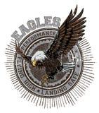 águilas Fotos de archivo