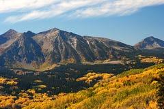 Álamos tembloses del otoño cerca del paso de Kebler en Colorado imagen de archivo