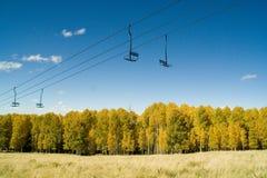 Álamos tremedores e elevador de esqui Foto de Stock Royalty Free