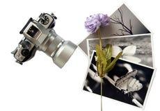 Álbum de foto Foto de archivo libre de regalías