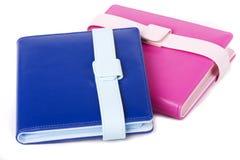 Álbum de foto cor-de-rosa e azul Foto de Stock