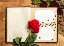 Álbum de foto y rosas rojas en las semillas del café Foto de archivo libre de regalías