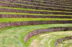 Ámérica do Sul, Moray, Cusco, Peru Fotografia de Stock