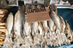 Ámérica do Sul, peixes fritados no mercado no Iquitos major a cidade em Amazónia imagem de stock royalty free