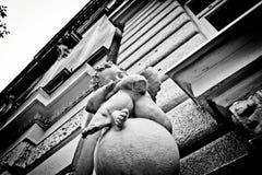 Ángel blanco y negro el dormir Imagenes de archivo