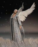Ángel de la Navidad en una noche del invierno Imagen de archivo libre de regalías