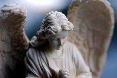 Ángel de la sopa de mariscos Imagenes de archivo