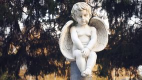 Ángel del bebé con una mirada triste almacen de metraje de vídeo
