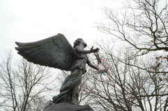 Ángel en un ala Fotografía de archivo