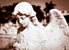 Ángel femenino joven en cortinas de la sepia Foto de archivo