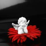 Ángel y una flor Imagenes de archivo