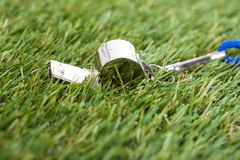 Árbitro Whistle Imagem de Stock Royalty Free