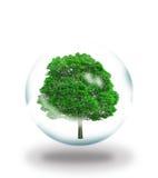 Árbol stock de ilustración