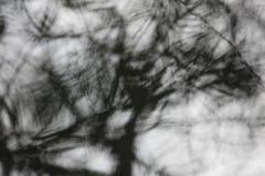 Árbol abstracto Fotografía de archivo libre de regalías