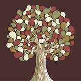 Árbol abstracto del tiempo del otoño Imágenes de archivo libres de regalías