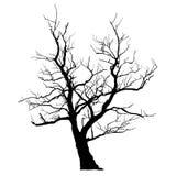Árbol abstracto muerto Imagen de archivo