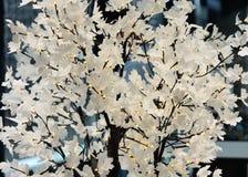 Árbol adornado con las guirnaldas del ` s del Año Nuevo Imagenes de archivo
