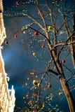 Árbol adornado con las luces del Año Nuevo y de la Navidad Imagen de archivo