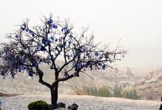 Árbol adornado con los males de ojo, en el valle de Uchisar en Cappadocia, Turquía Fotos de archivo libres de regalías