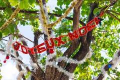 Árbol adornado por un día de fiesta del Año Nuevo en la ciudad tropical de las FO Imagenes de archivo