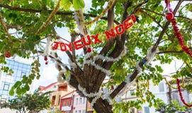 Árbol adornado por un día de fiesta del Año Nuevo en la ciudad tropical de las FO Foto de archivo