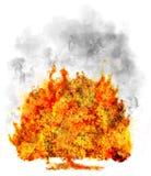 Árbol aislado en fuego en el blanco, símbolo imágenes de archivo libres de regalías
