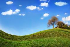 Árbol bajo las nubes Foto de archivo libre de regalías