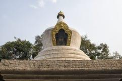 Árbol blanqueado grande del stupa y del bodhi en el primer patio de Punakha Dzong, Bhután Imagen de archivo libre de regalías