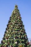 Árbol brillantemente adornado del Año Nuevo en la calle con el cielo azul Fotografía de archivo libre de regalías