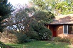 Árbol caido en casa Imágenes de archivo libres de regalías