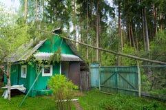 Árbol caido en una casa de madera después de un huracán, en un bosque spruce en el país, árbol que cae después de la tormenta Imagenes de archivo