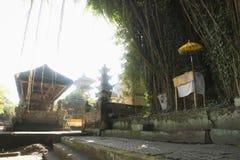 Árbol, capilla y templo grandes del balinese con el contraluz, Pura Samuan Tiga, Ubud, Bali Indonesia Foto de archivo libre de regalías
