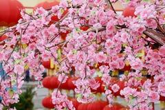 Árbol chino de la flor del Año Nuevo Imágenes de archivo libres de regalías