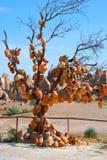 Árbol con cerámica Imágenes de archivo libres de regalías