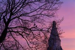 Árbol con el cuervo Foto de archivo libre de regalías
