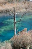Jiuzhaigou en invierno Fotos de archivo libres de regalías