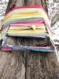 Árbol con el paño multicolor envuelto Imagenes de archivo